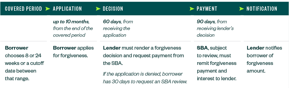 PPP Loan Forgiveness Overview